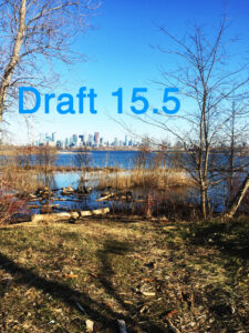 Draft 15.5 Cover